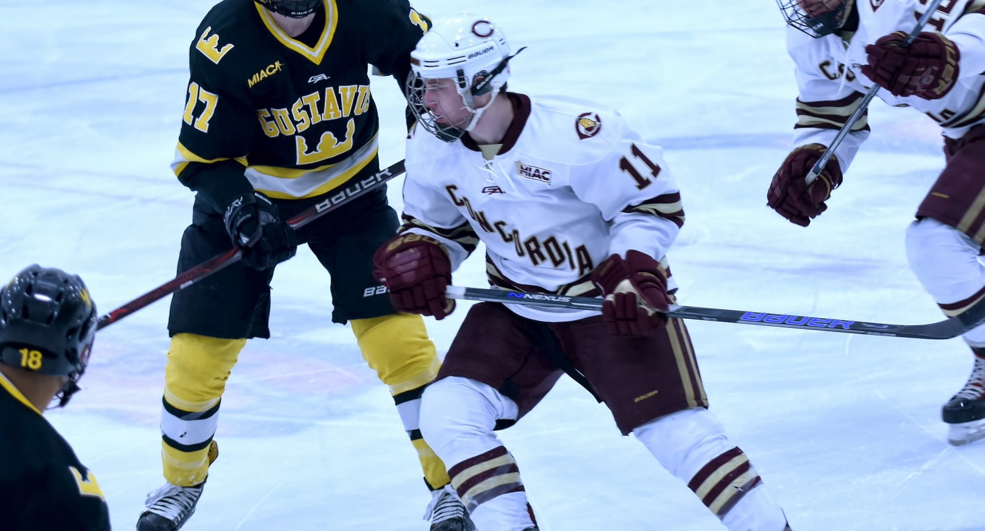 Sophomore Jacen Bracko scored the Cobbers' second goal in the series finale at Gustavus. Bracko now has 10 points on the year and is one of four CC players with a double-digit point total.