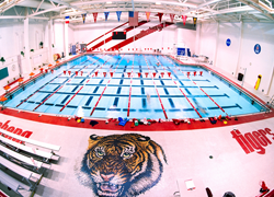 The Natatorium is set apart by a mosaic tile Tiger in the deck.