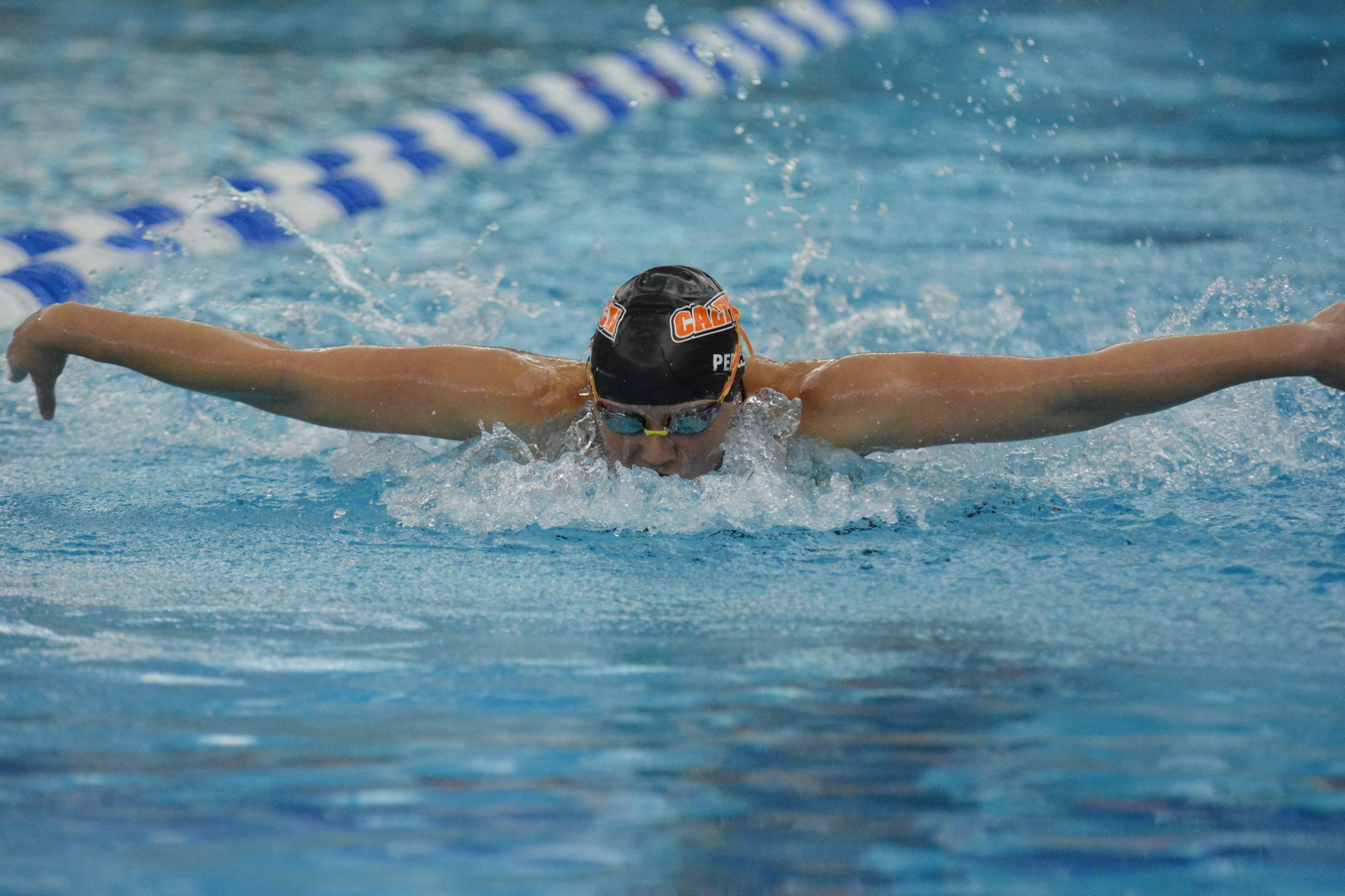 Percin Competes at Second-Straight NCAA Championship Meet