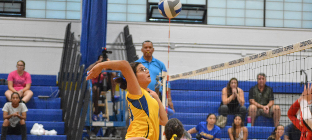 Women's Volleyball Upended At Dominican, 3-1