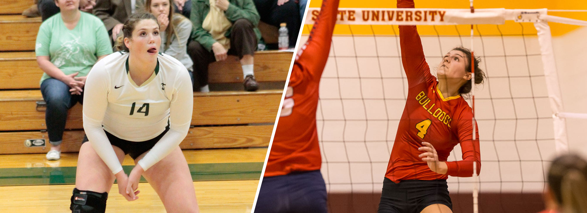 GLIAC Volleyball Players of the Week - Week 10