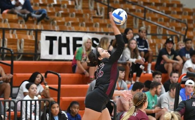 Greyhounds Defeat Cloud on Dig Pink Night