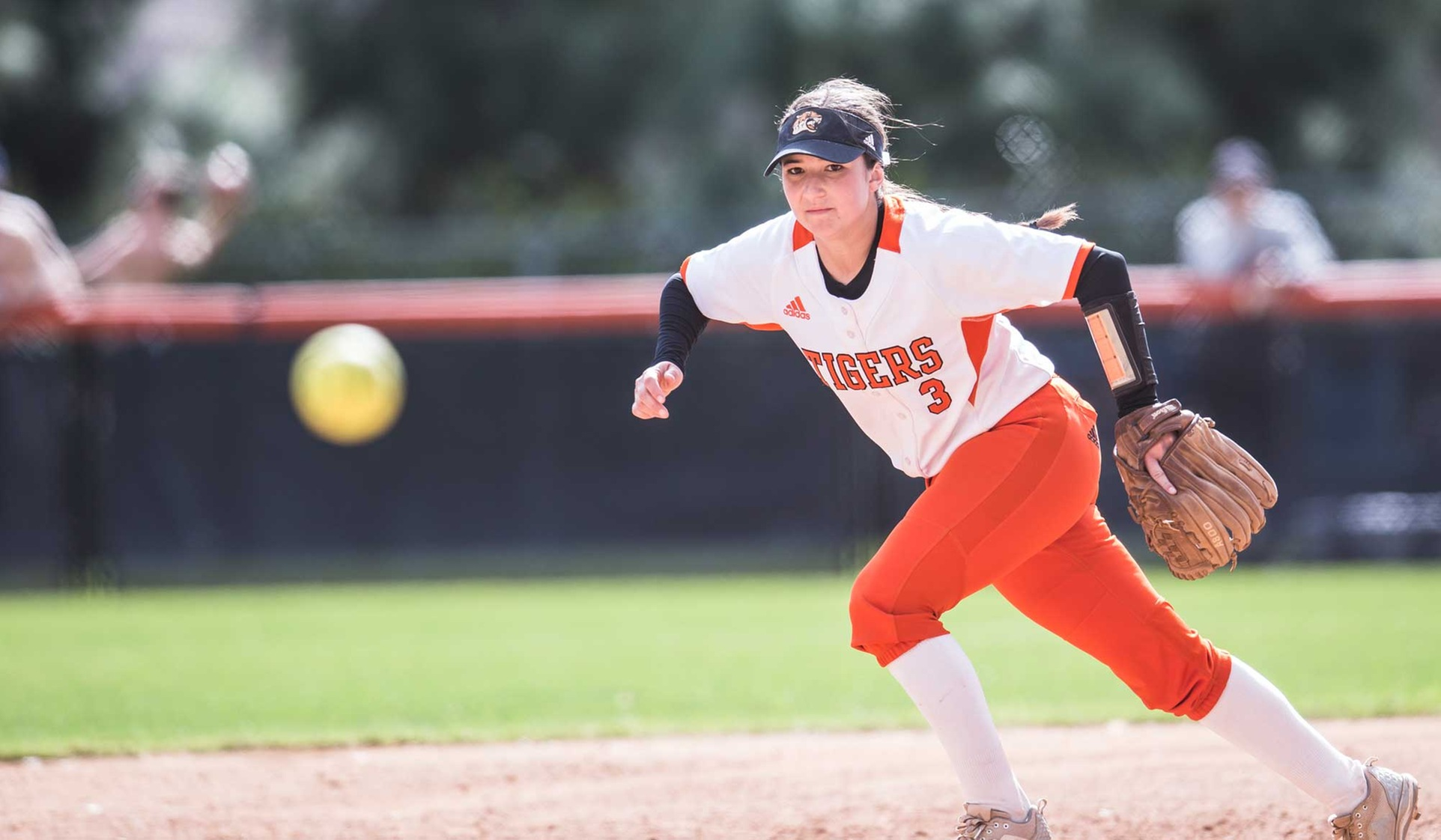 Tigers Fall in Doubleheader at Chapman