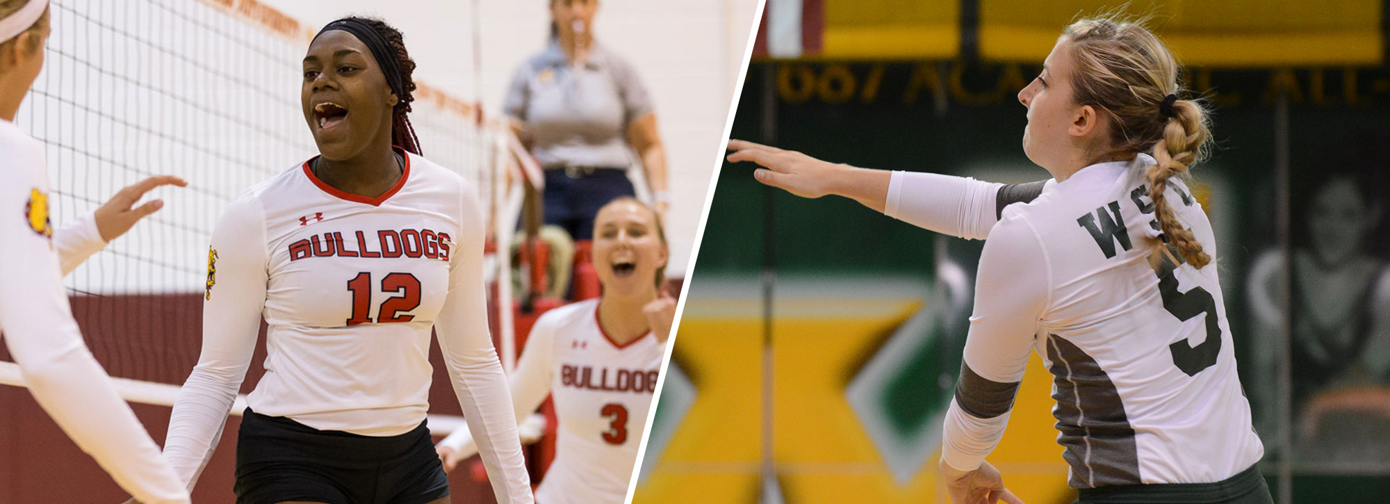 Ferris State's Buckley, Wayne State's Richardson Earn GLIAC Volleyball Weekly Accolades