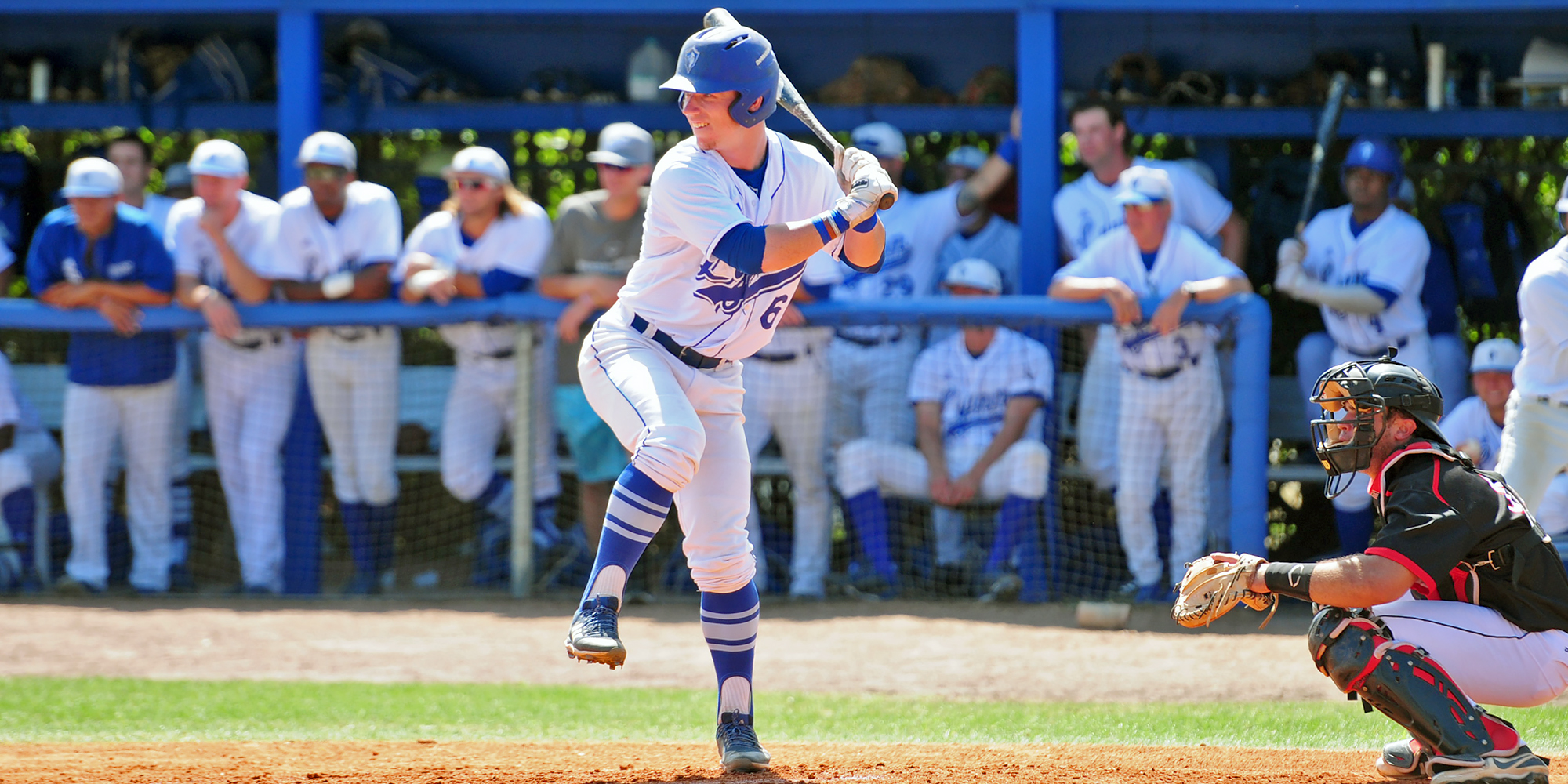 Baseball's Dorrian Collects D2CCA All-South Region Honors