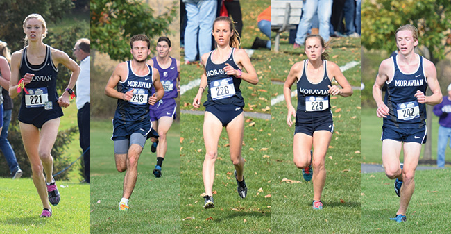 Five Greyhounds Earn Landmark XC All-Conference Honors; Brockett & Mayer Receive Major Awards