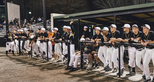 Pirates fall to 2nd-ranked Tigers in series opener