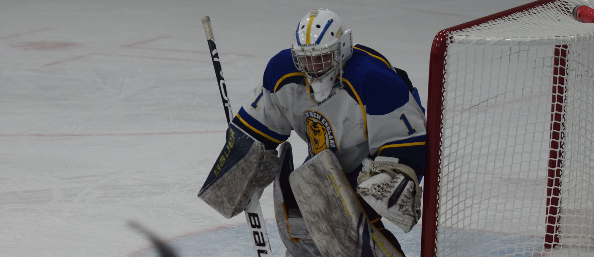 Kyle Carducci had 50 saves against Endicott on Friday evening. (Photo by Rachael Margossian)