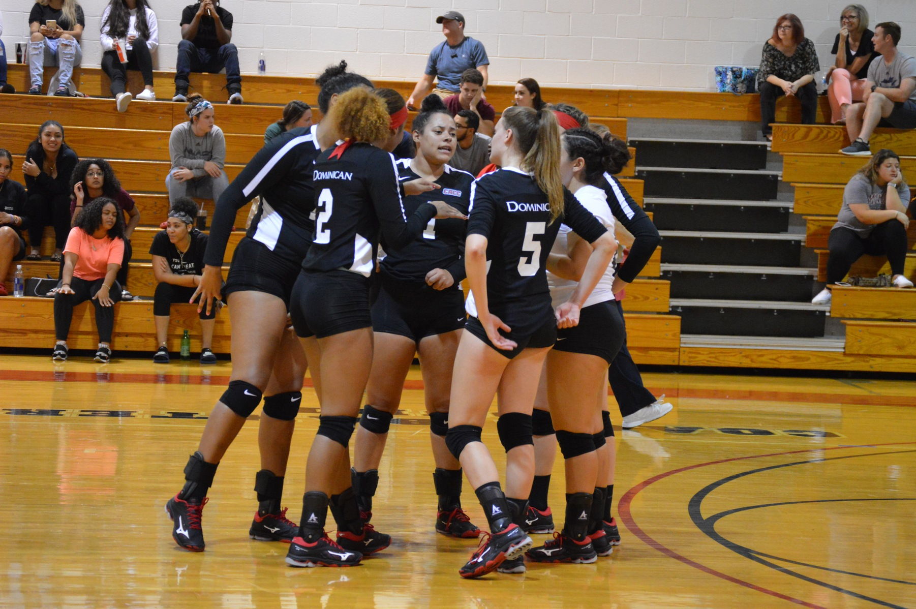YELLOW JACKETS SWEEP WOMEN'S VOLLEYBALL