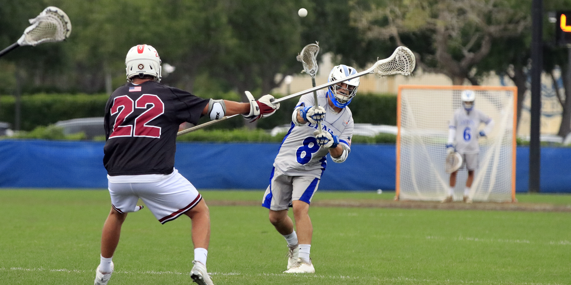 Hot Streak! Men's Lacrosse Pounces Panthers