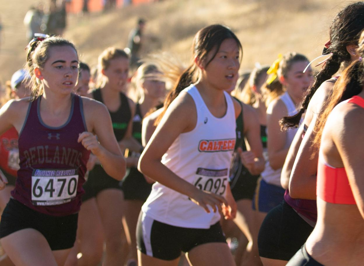 Talented Core Set to Lead Women's Cross Country in 2019