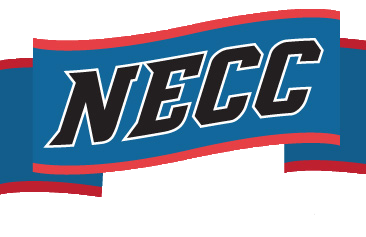 Bay Path Lacrosse receives NECC Conference Honors for Herring, Rubacha, Orrick and Tran