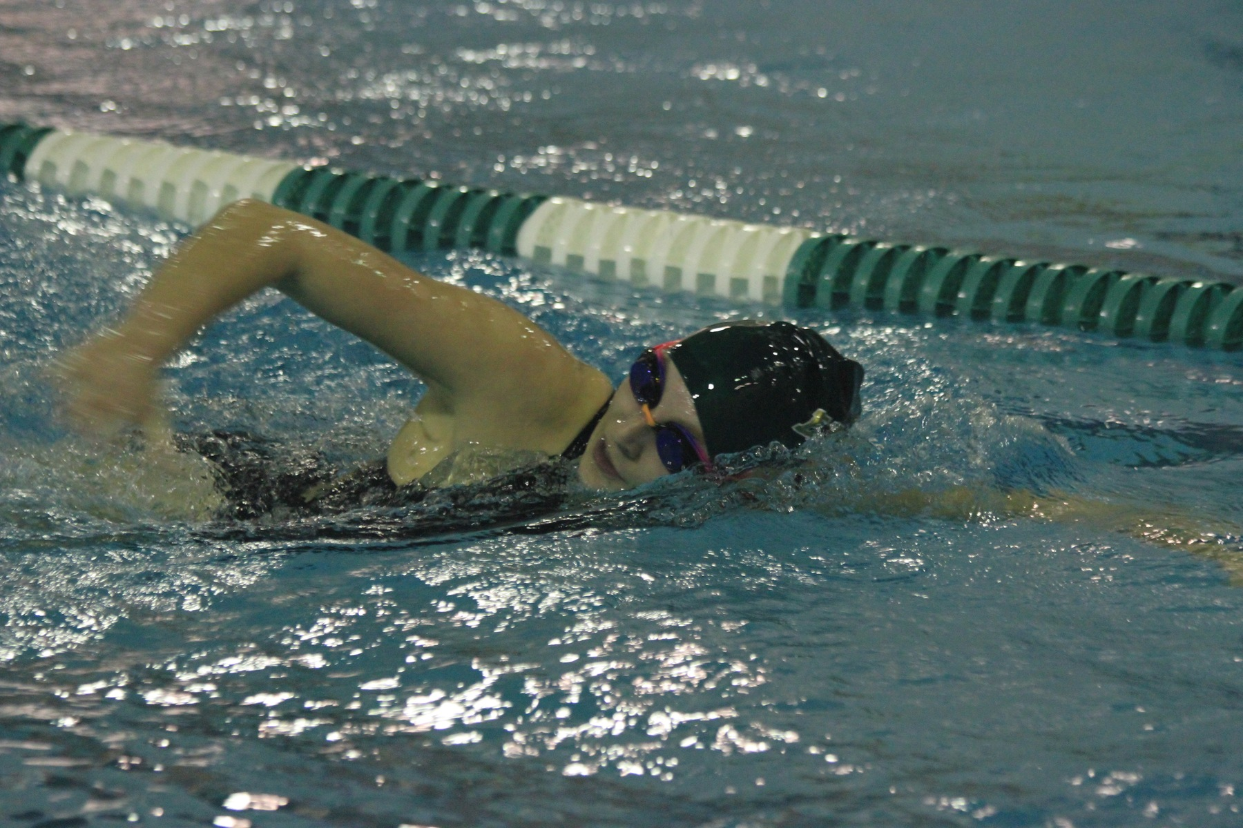 Men's Swimming Races Past Colby-Sawyer, Women Edged By Chargers