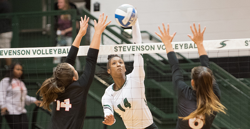 Women's Volleyball Posts Two Sweeps to Open Season