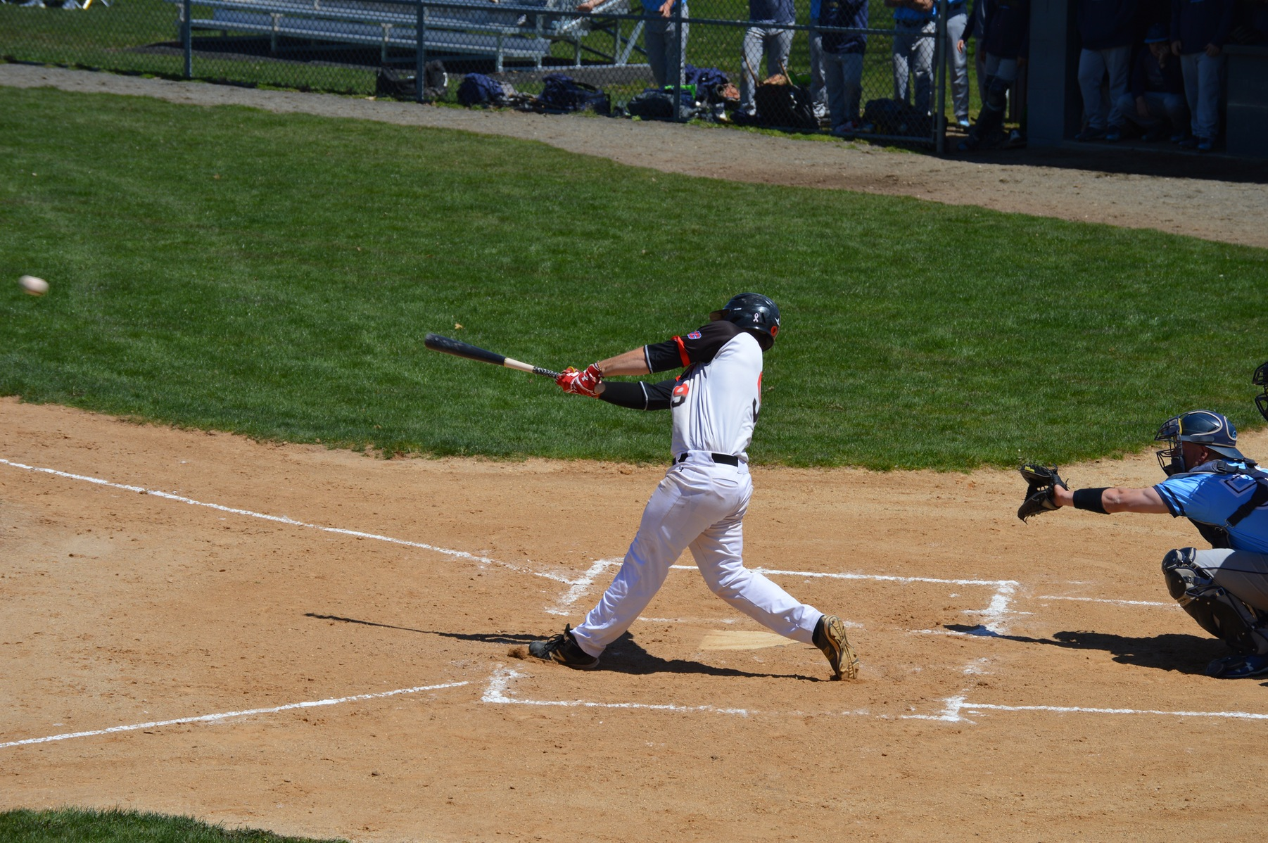 The Dominican College baseball team were swept in CACC action this afternoon by Post University.