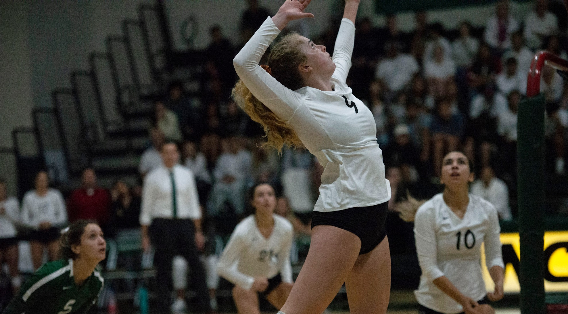 Volleyball Takes Down Cal Lutheran