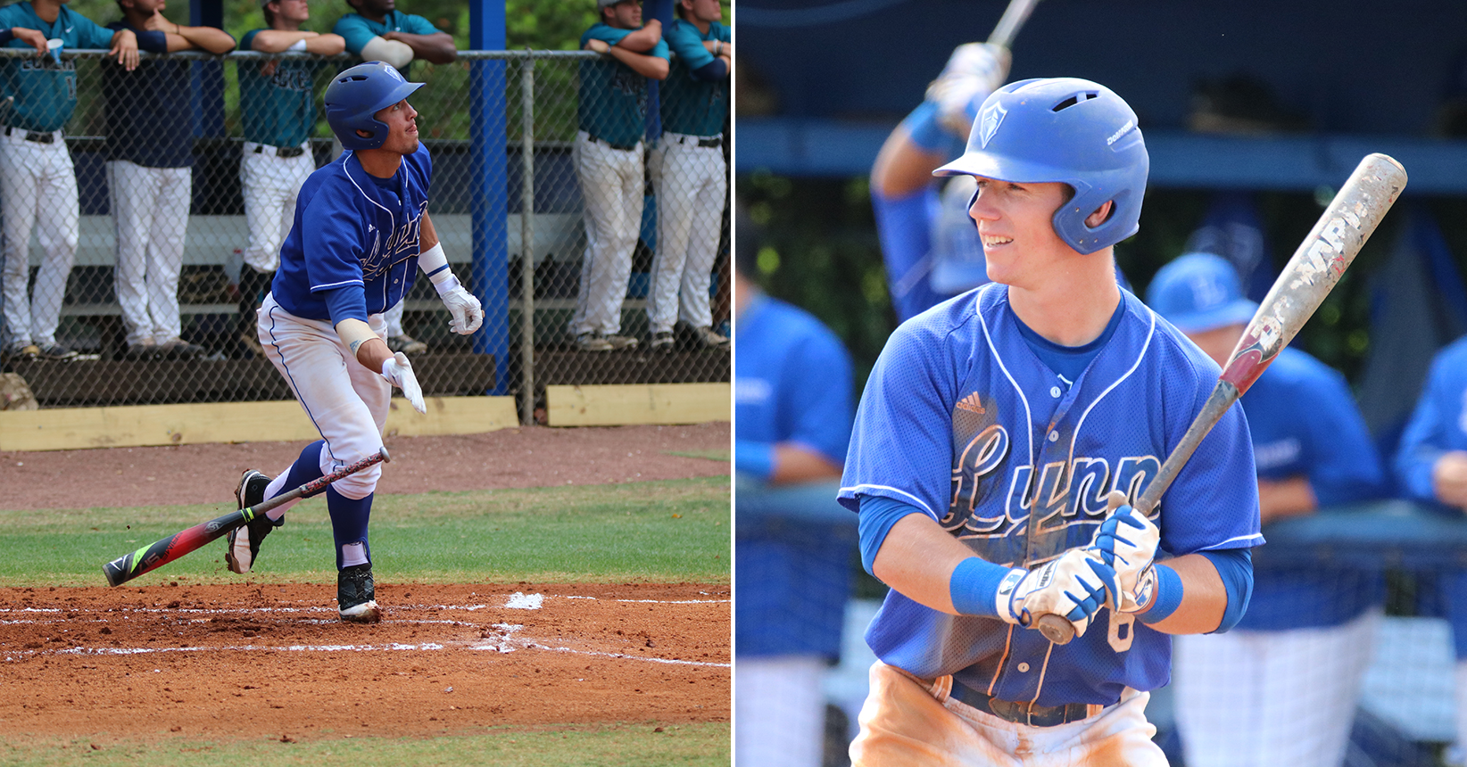 Baseball Duo Appointed to ABCA/Rawlings All-Region Team