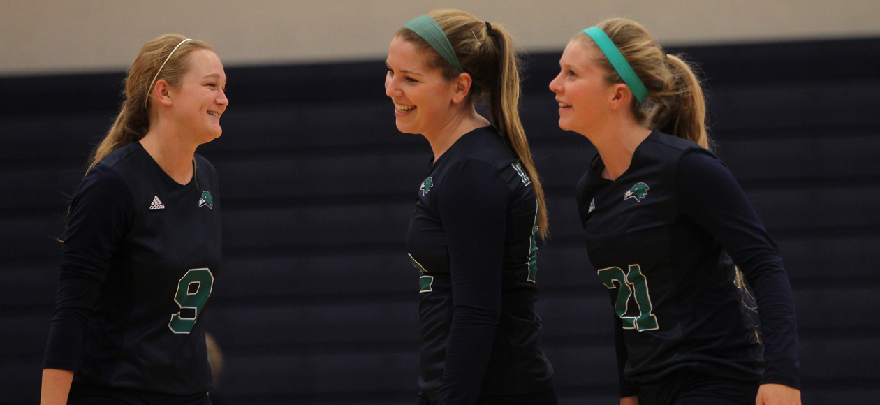 Endicott Downs Salem State 3-0 in North Shore Action