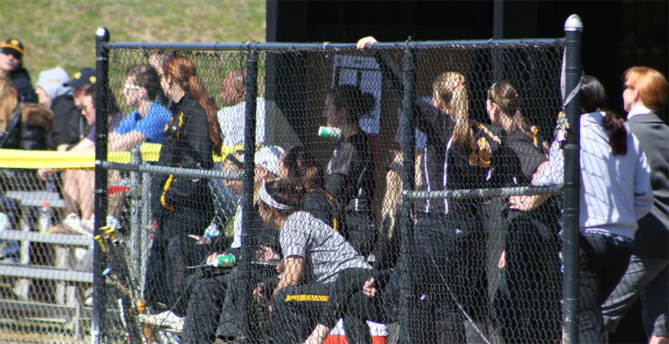 Softball Picked to Finish Sixth in AEC Preseason Poll