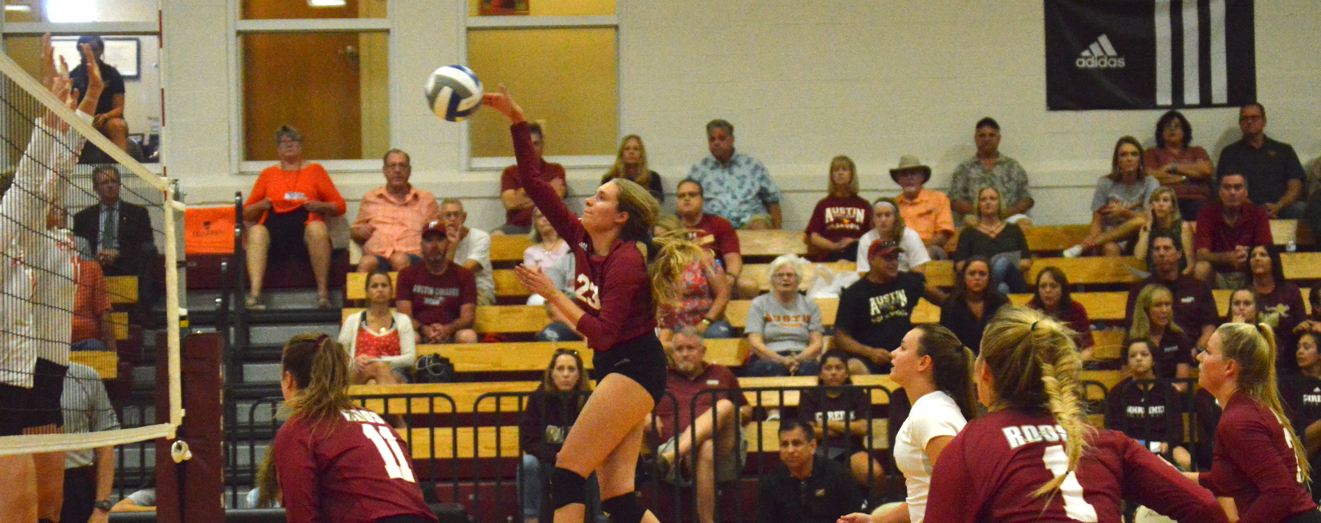 'Roos Fall in Five to No. 24 UMHB