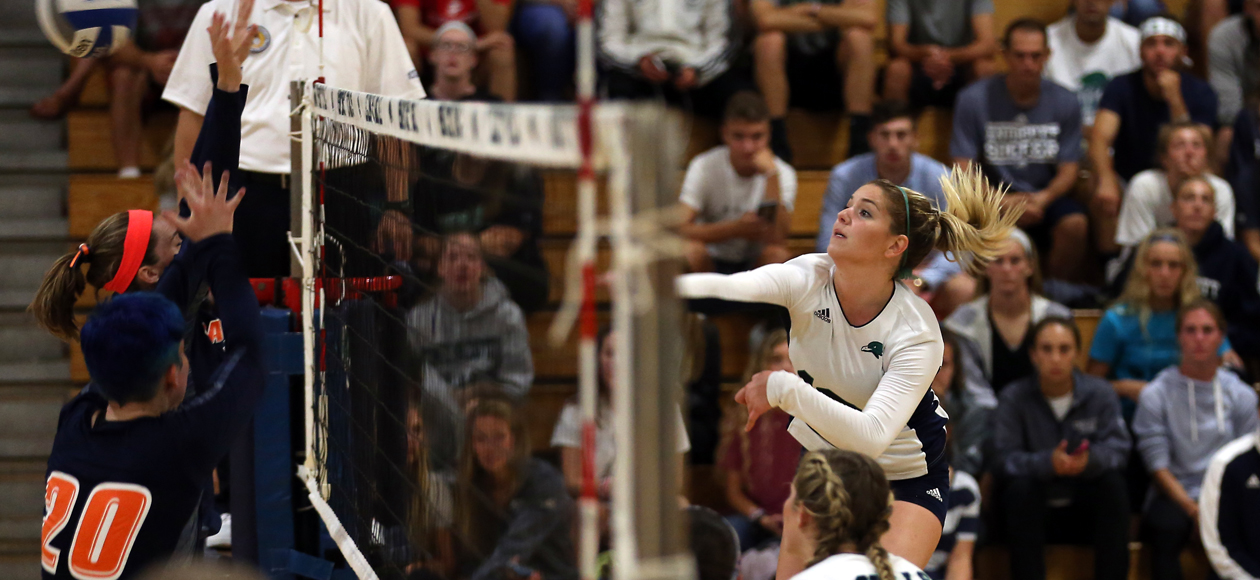 Endicott Sweeps Salve Regina to Advance to CCC Championship