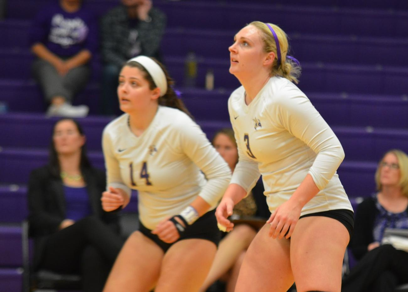 Volleyball Stifled at Albion
