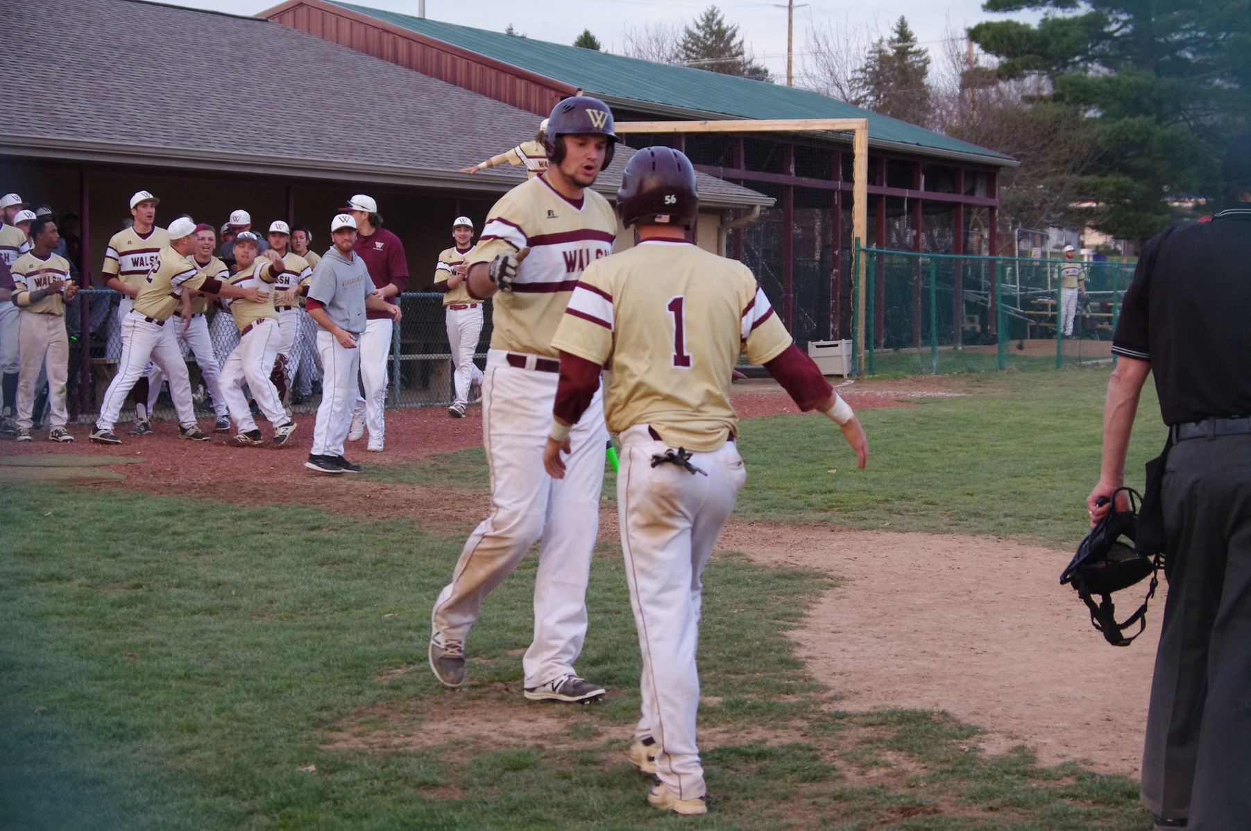 Stalnaker's Walk-off Gives Walsh Series Win Over No. 13 Grand Valley