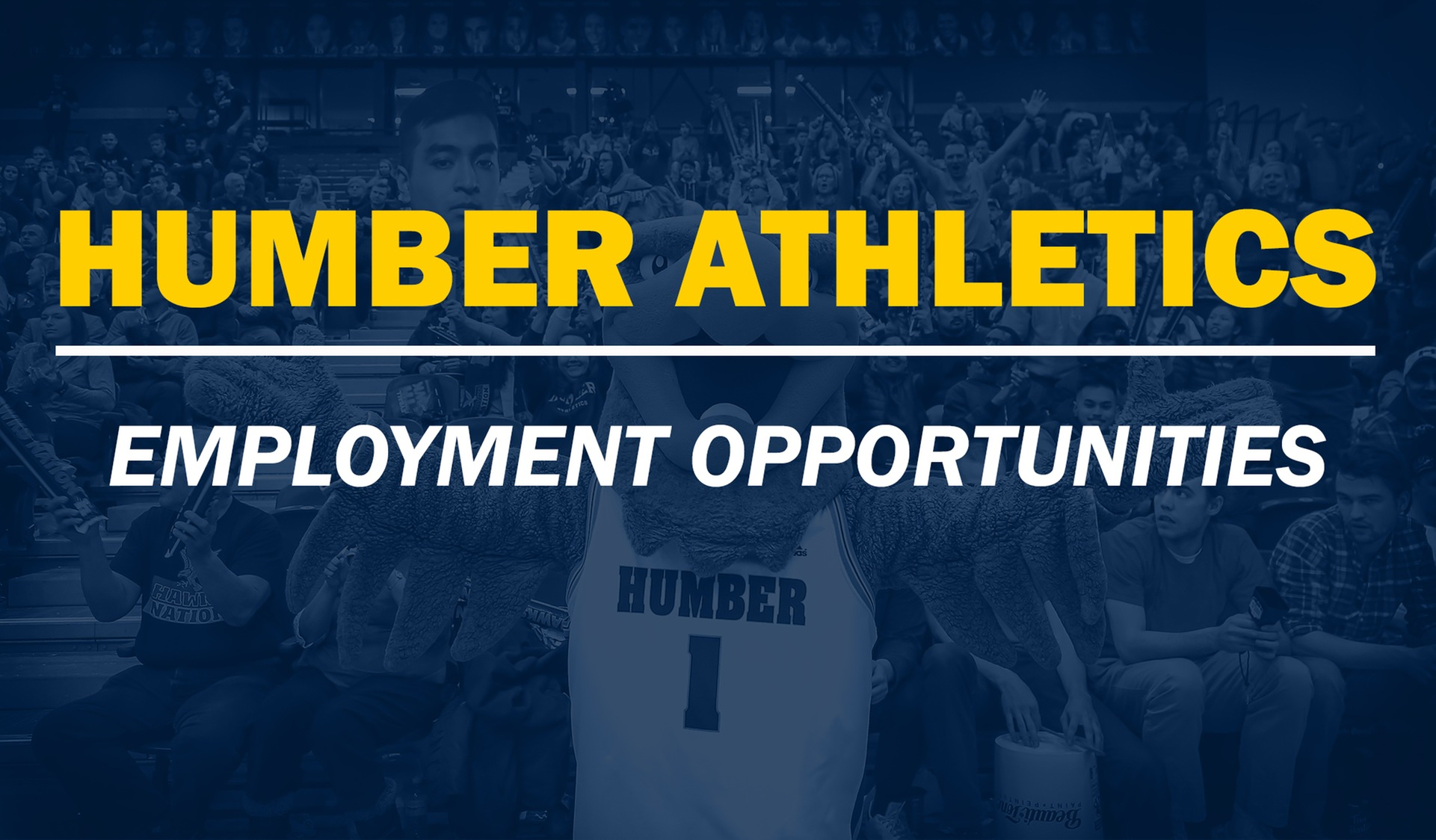 Humber Athletics Now Hiring for Fall 2019