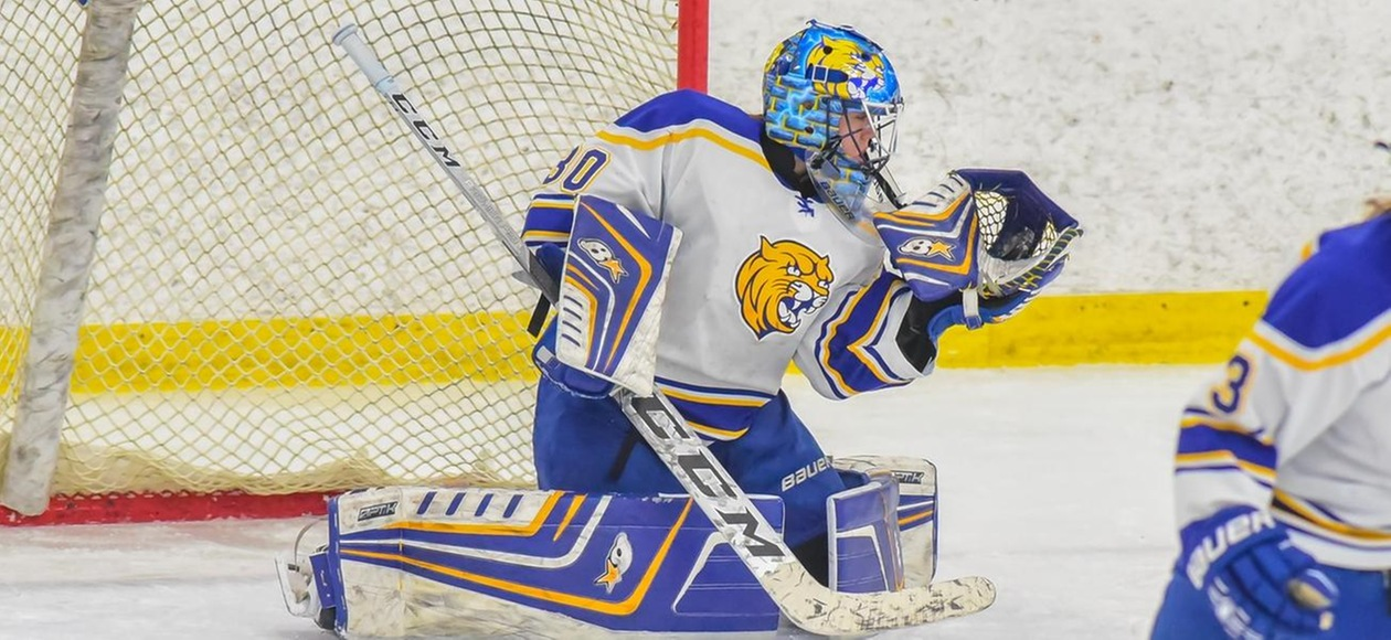 Women's Ice Hockey Wins Third-Straight 3-1 Over Panthers