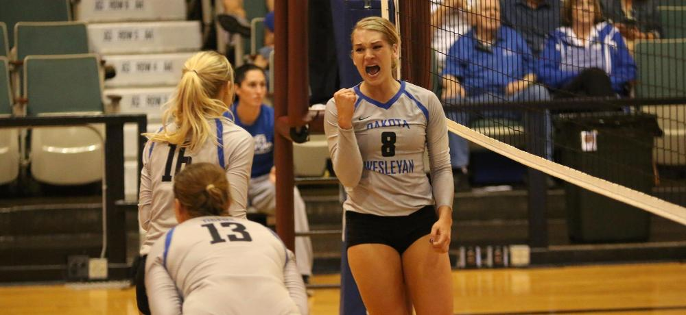 Tiger volleyball players honored with postseason accolades