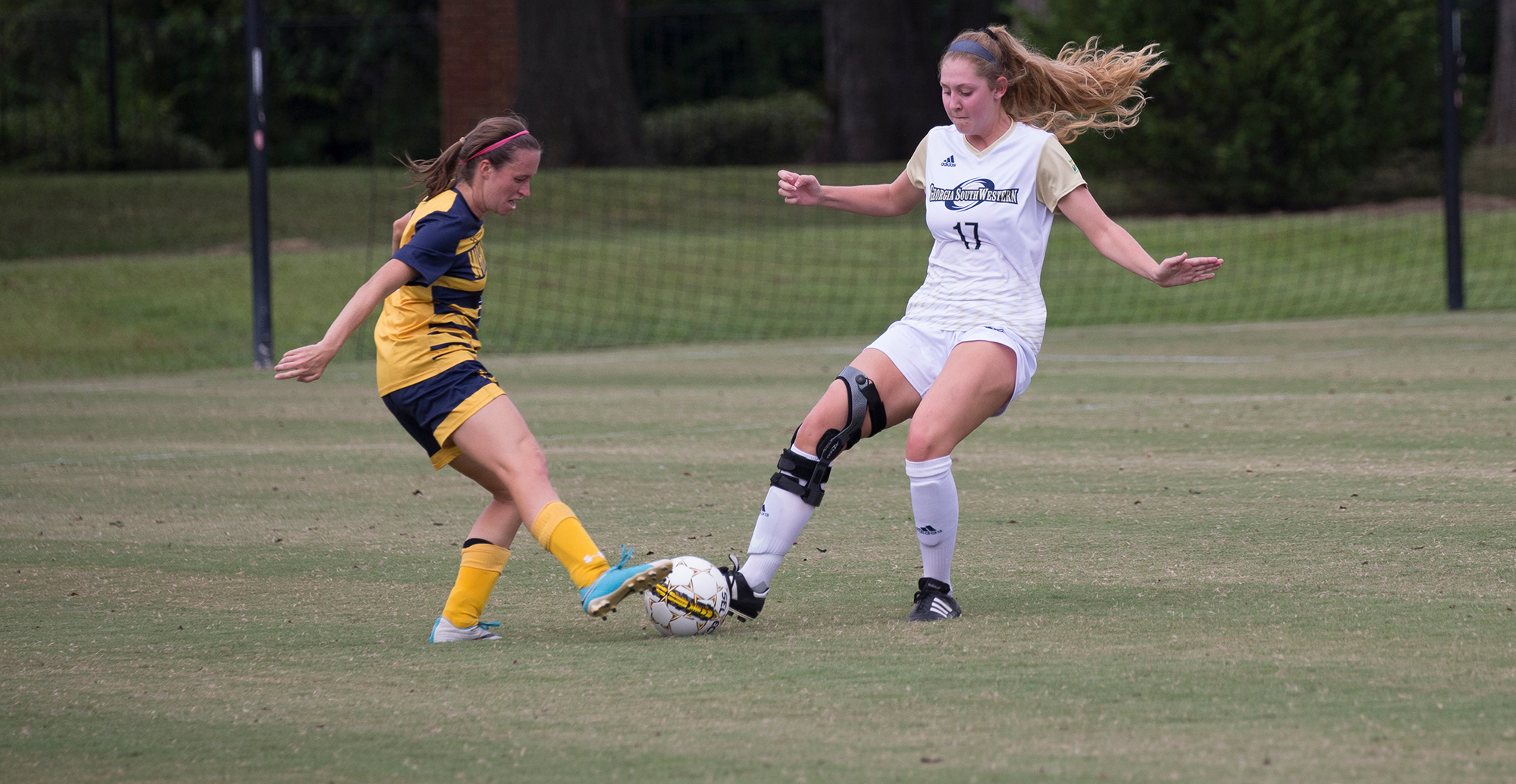 Young Harris Shutout Lady Canes