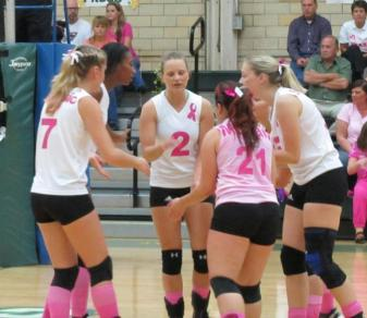 Felician women's volleyball team members wore special jerseys adorned with pink numbers and the breast cancer awareness ribbon at their Dig Pink event on Oct. 19, 2012. (Lori Kwiatkowski)