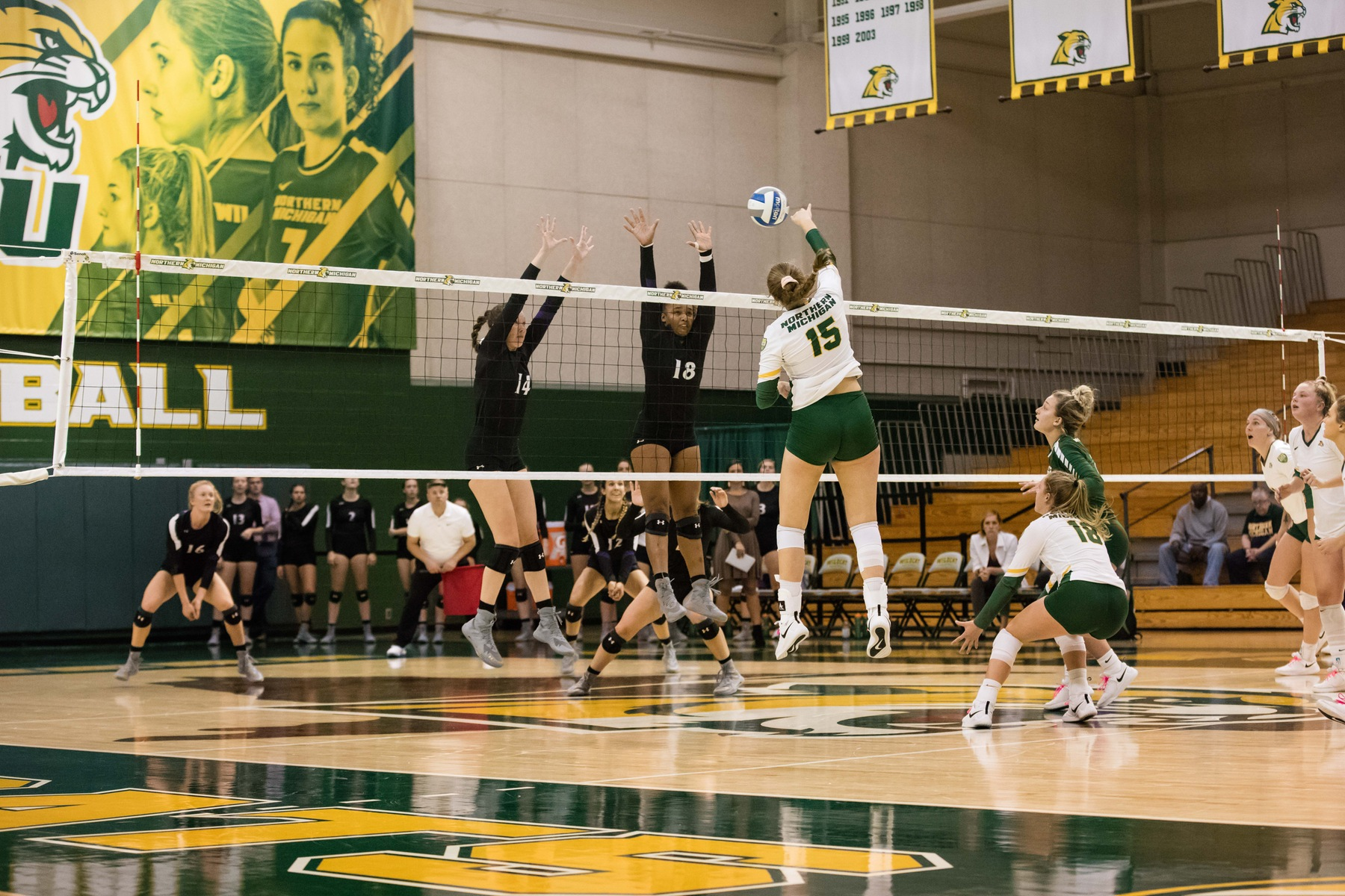 Volleyball Defeats Wayne State 3-0