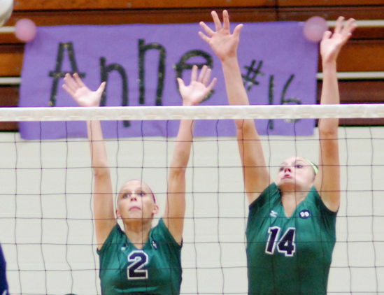 Volleyball falls to Heidelberg, 3-0