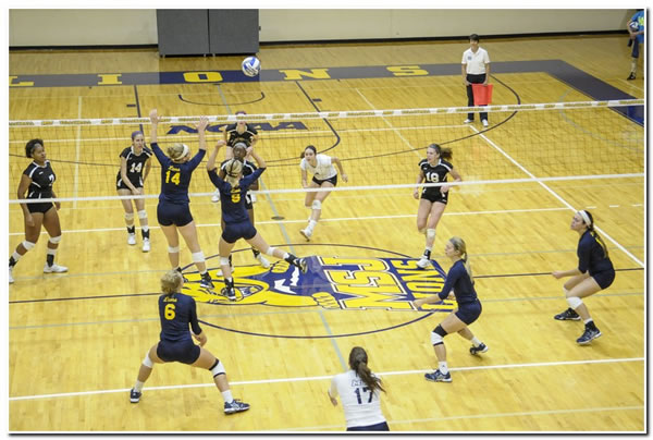 Lions' women's volleyball goes 1-1 in action at Manchester University