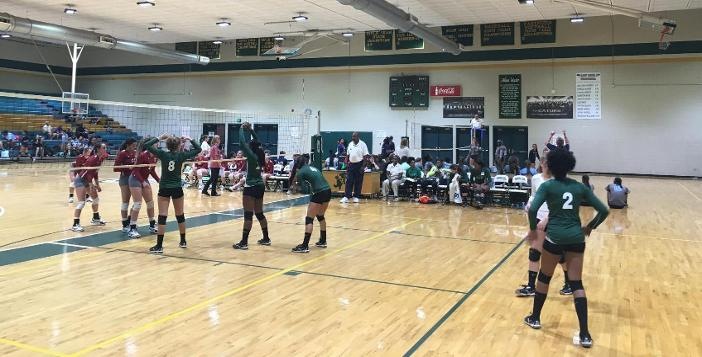 Lady Gators Split with Lowndes and Tift in Huge Volleyball Match