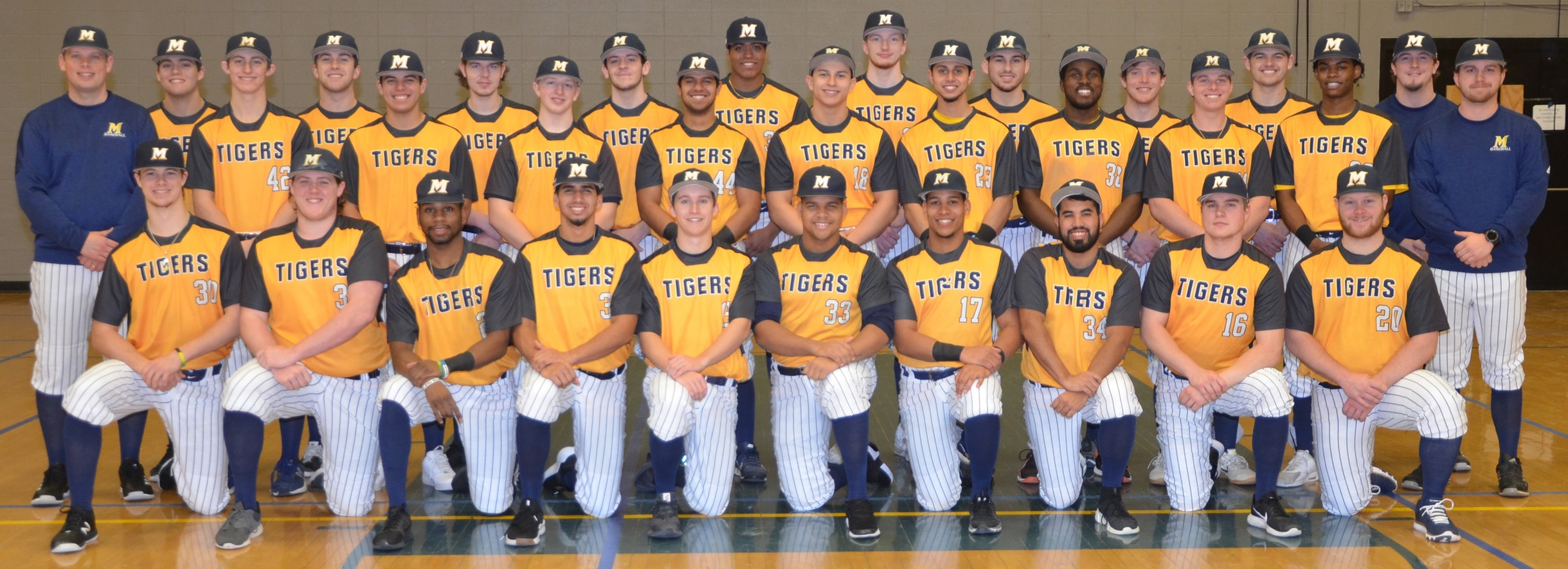 Tiger Baseball Sends Fourteen to Four-Year Institutions