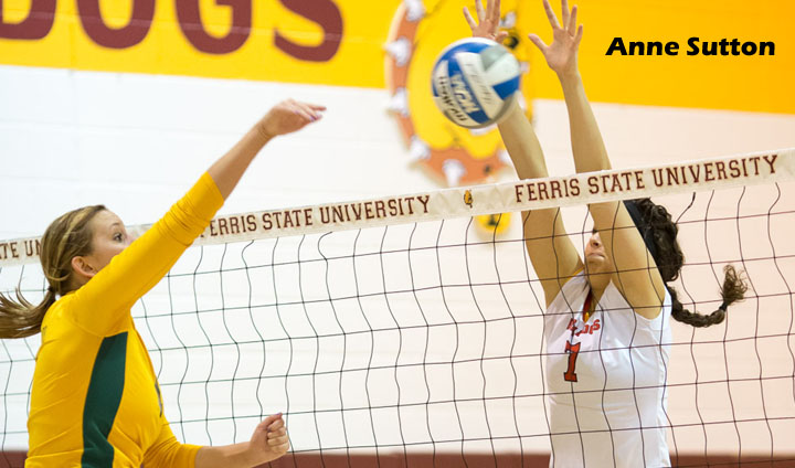FSU's Anne Sutton Named To Academic All-District Team