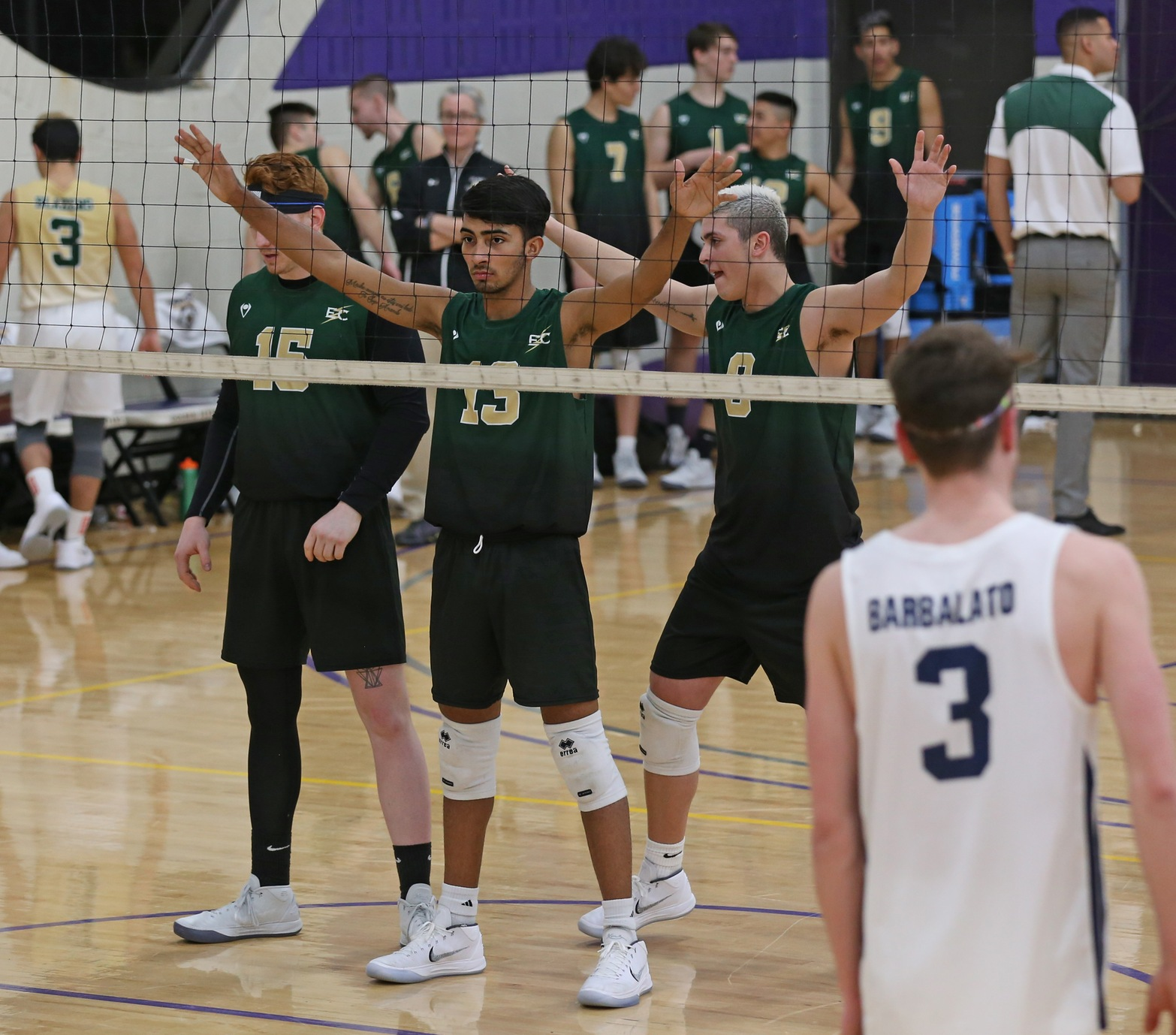 NO. 15 Men's Volleyball Split Tri-Match With NO.10 Endicott College and Vassar College