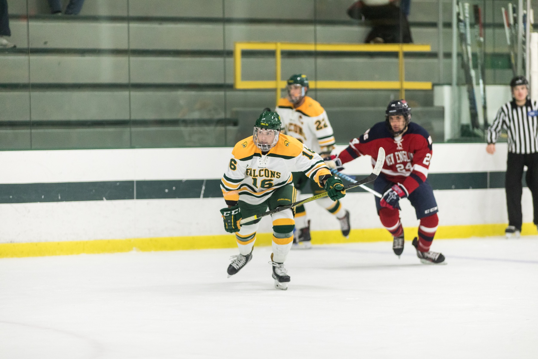 Falcons Fall to Plymouth State, 5-3