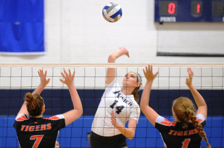 Women's Volleyball: Collins, Raiders sweep past Regis College