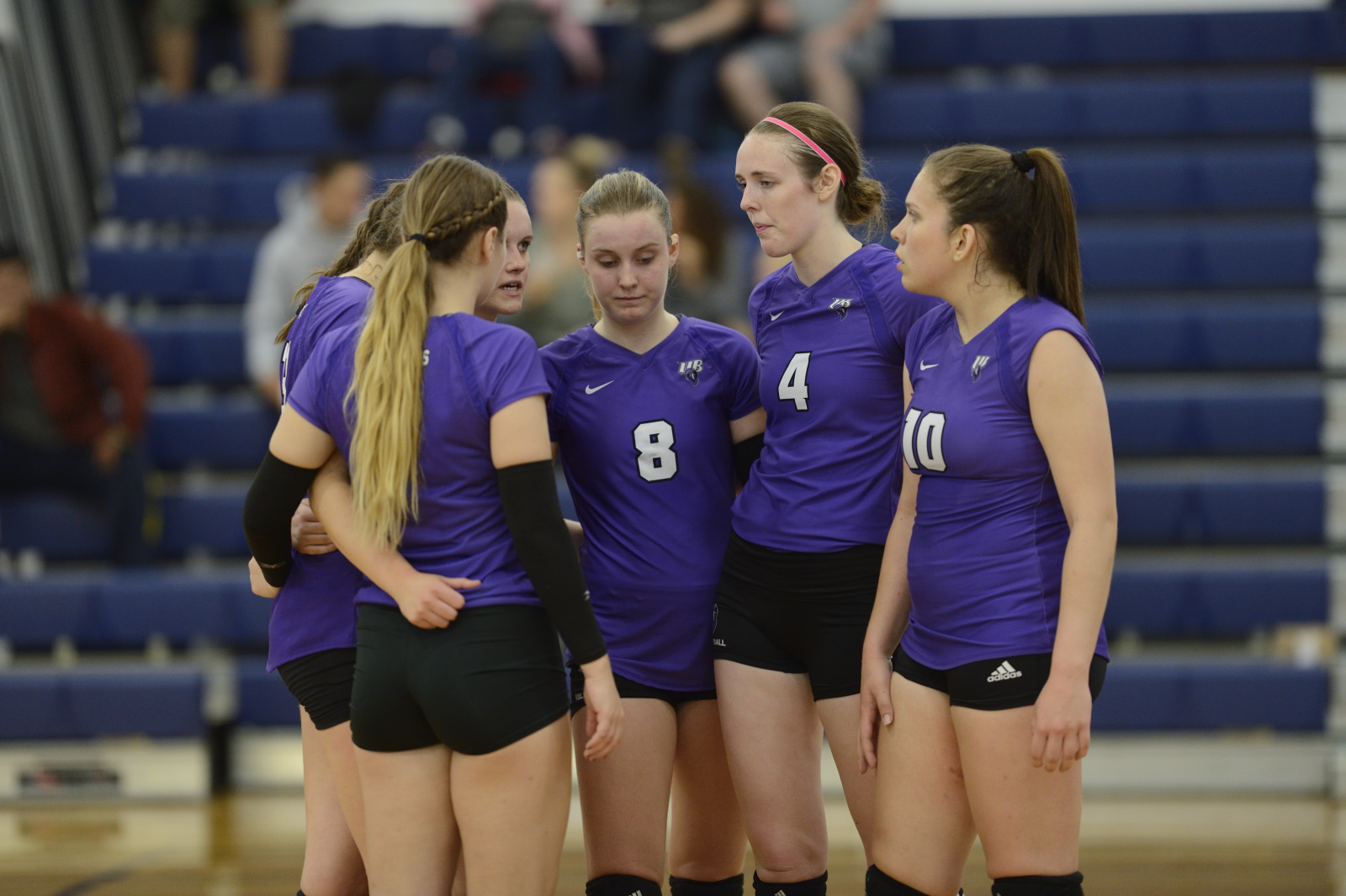 Purple Knights Fall Twice At Lindenwood University Women's Volleyball Challenge
