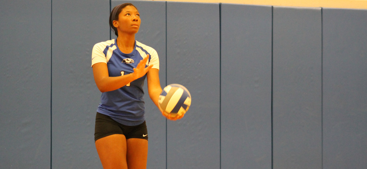 Volleyball Downs Pine Manor To Split Tri Match