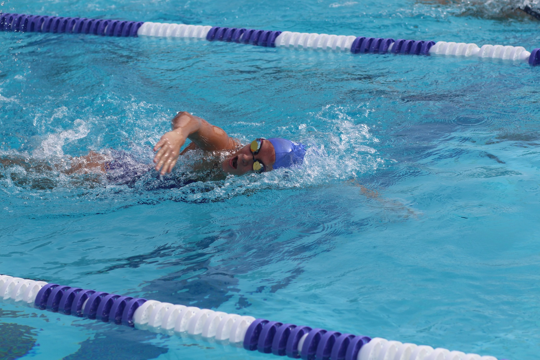 Swimming and Diving Claims Eight Events