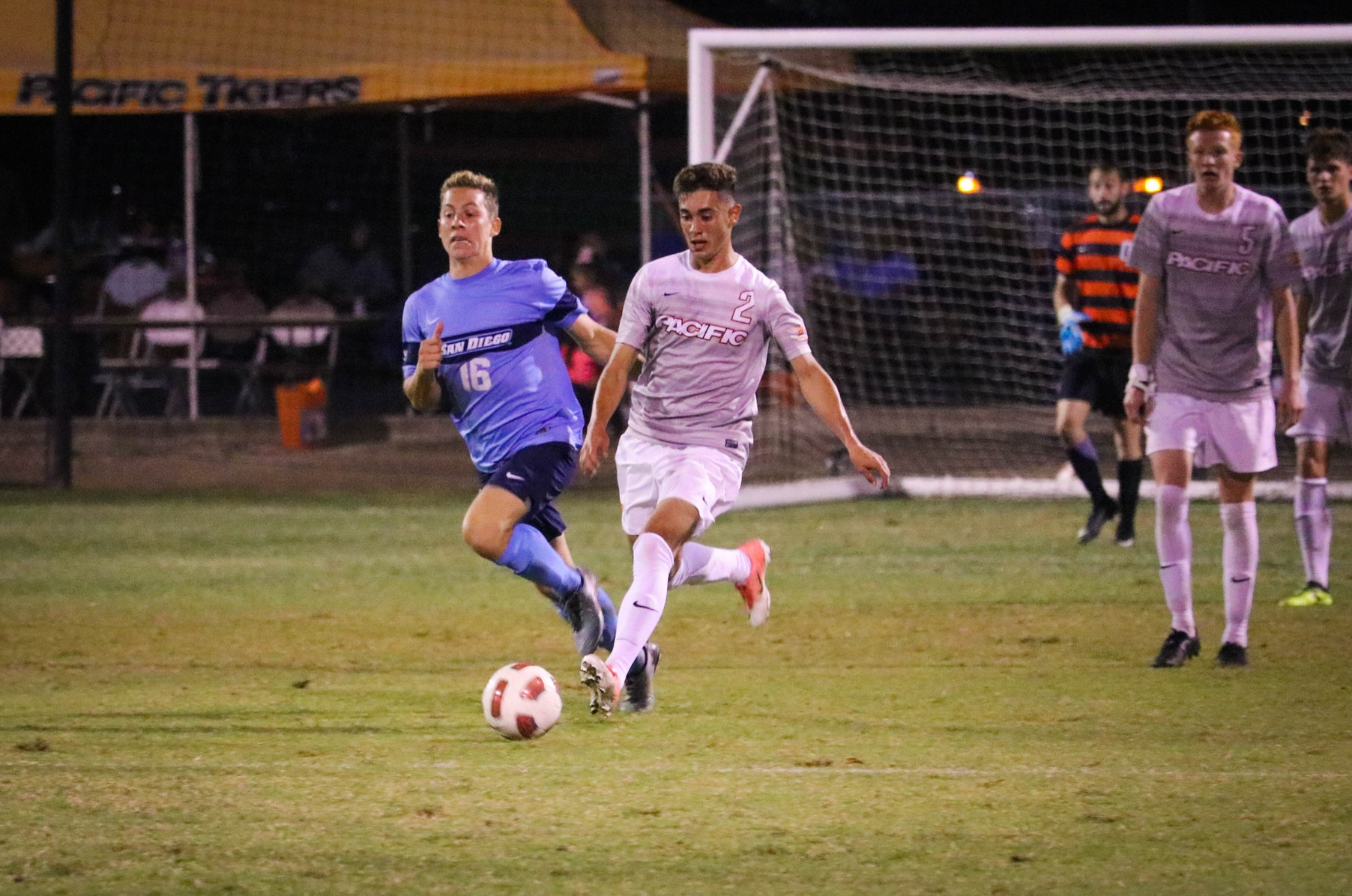 Tigers Blanked by Dons, 3-0