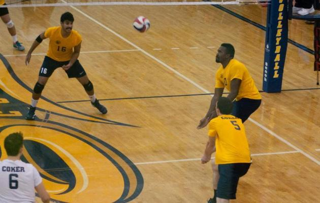 Cobras Tame Bulldogs in Fifth Set