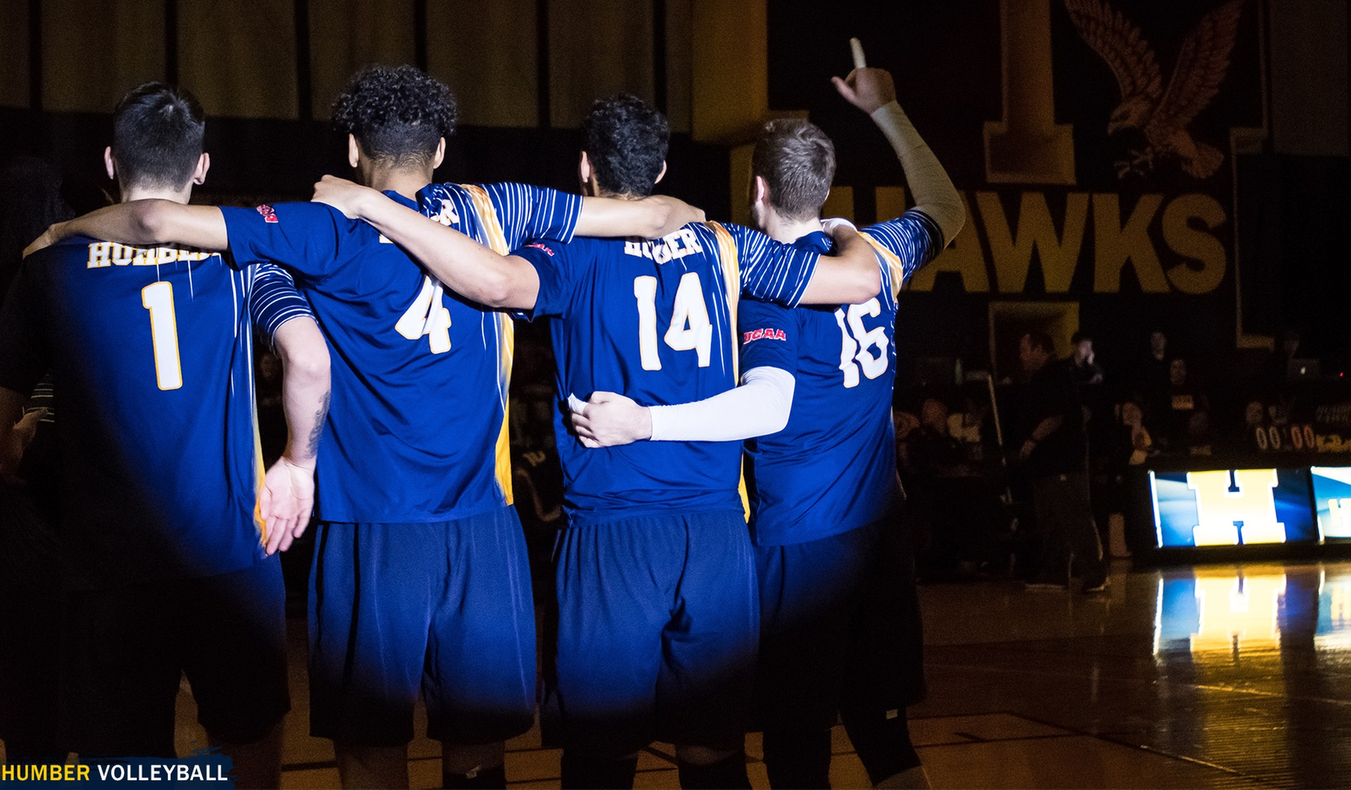 Men's Volleyball Release Open Tryout Dates