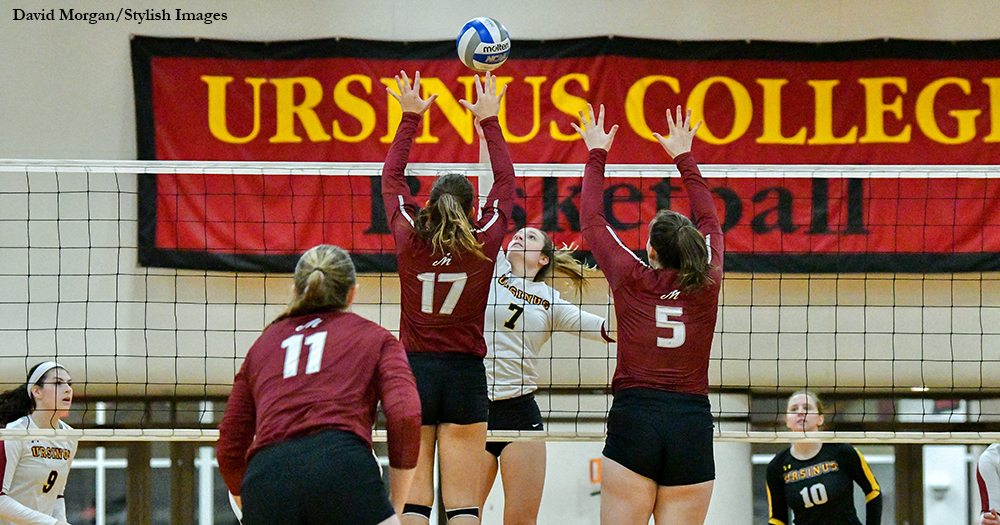 Volleyball Swept by Muhlenberg