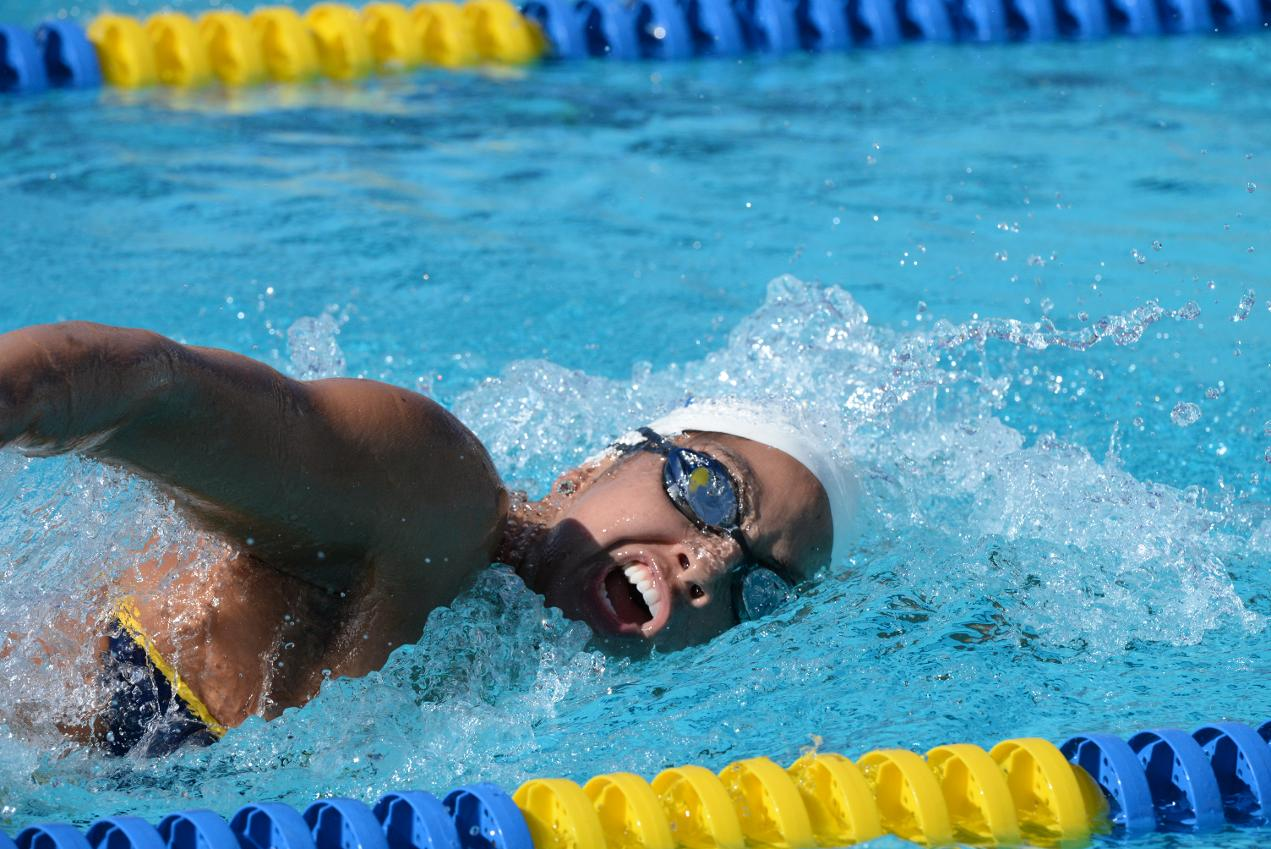 Gaucho Men and Women Sweep in Duel Meet with UCSD