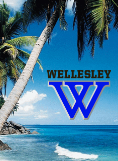 Wellesley Athletics Teams Head to Warmer Climates for Spring Break